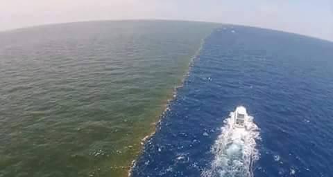 air laut dan air tawar tidak bercampur