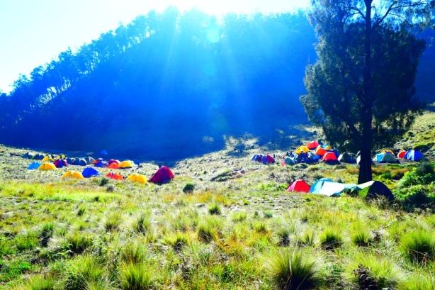 3 tenda