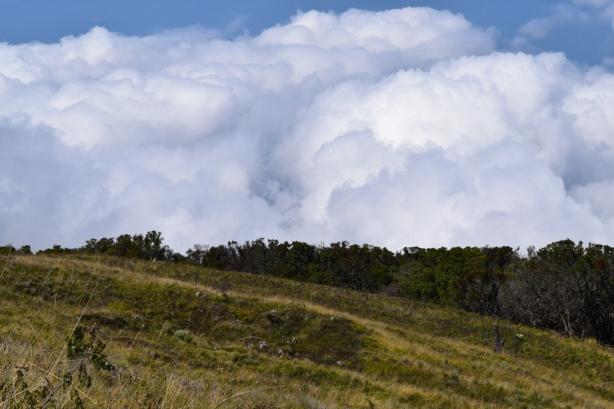30 Kapas awan